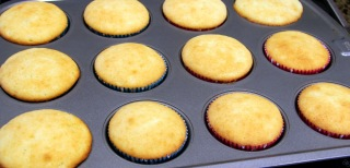 vanilla cupcakes baked